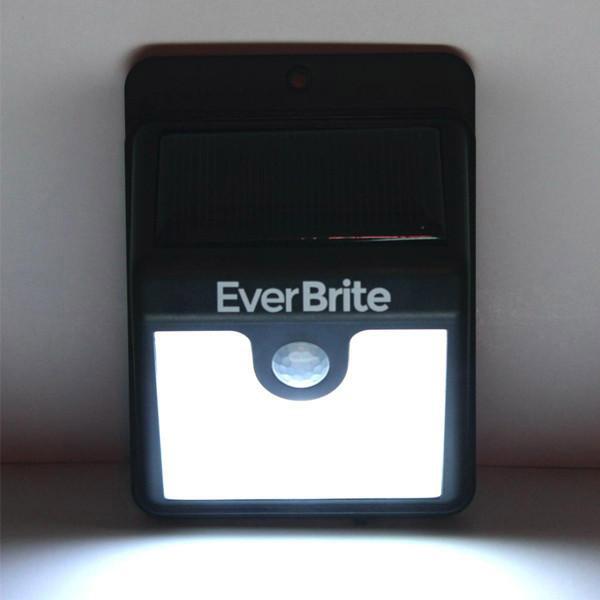 Bán sỉ đèn cảm biến ever brite