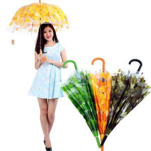 Ô dù trong suốt hoa văn 3D