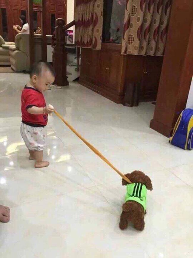 Bán sỉ Bán buôn đồ chơi chó biết nhảy biết hát 52 bài