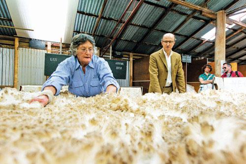 Kinh doanh khăn len lông cừu Acne Studios siêu lợi nhuận