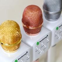 Micro kèm loa karaoke New Rixing K9