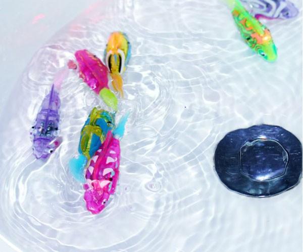 Bán buôn cá cảnh chạy pin có đèn led Robo Fish