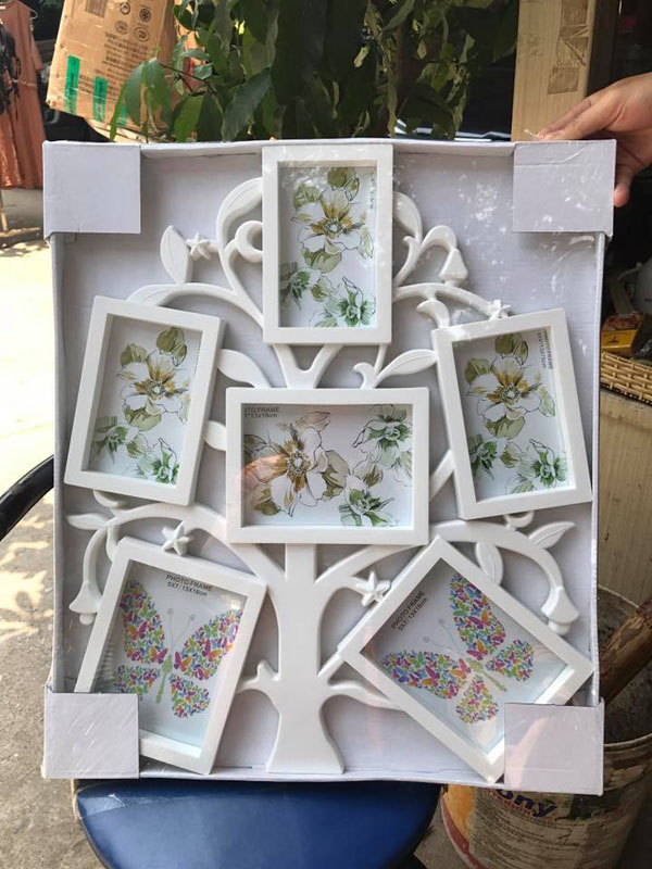 Bộ 6 khung ảnh hình cây độc đáo