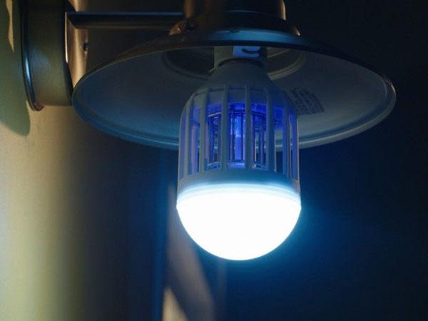 Bán sỉ bóng đèn led bắt muỗi Zaap Light cao cấp