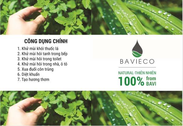 Bán buôn nước xịt phòng lá sả Bavieco 100ml
