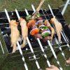 Bộ 10 que xiên thịt bằng inox dùng cho bếp nướng